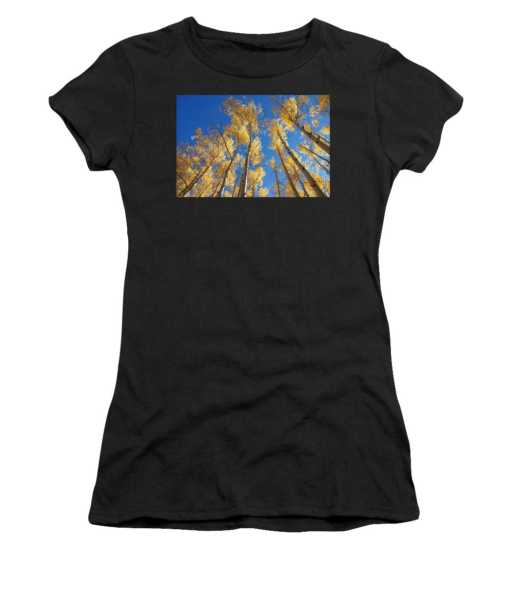 Aspen Women's T-Shirt (Athletic Fit) featuring the photograph Colorado Aspen by Jerry McElroy