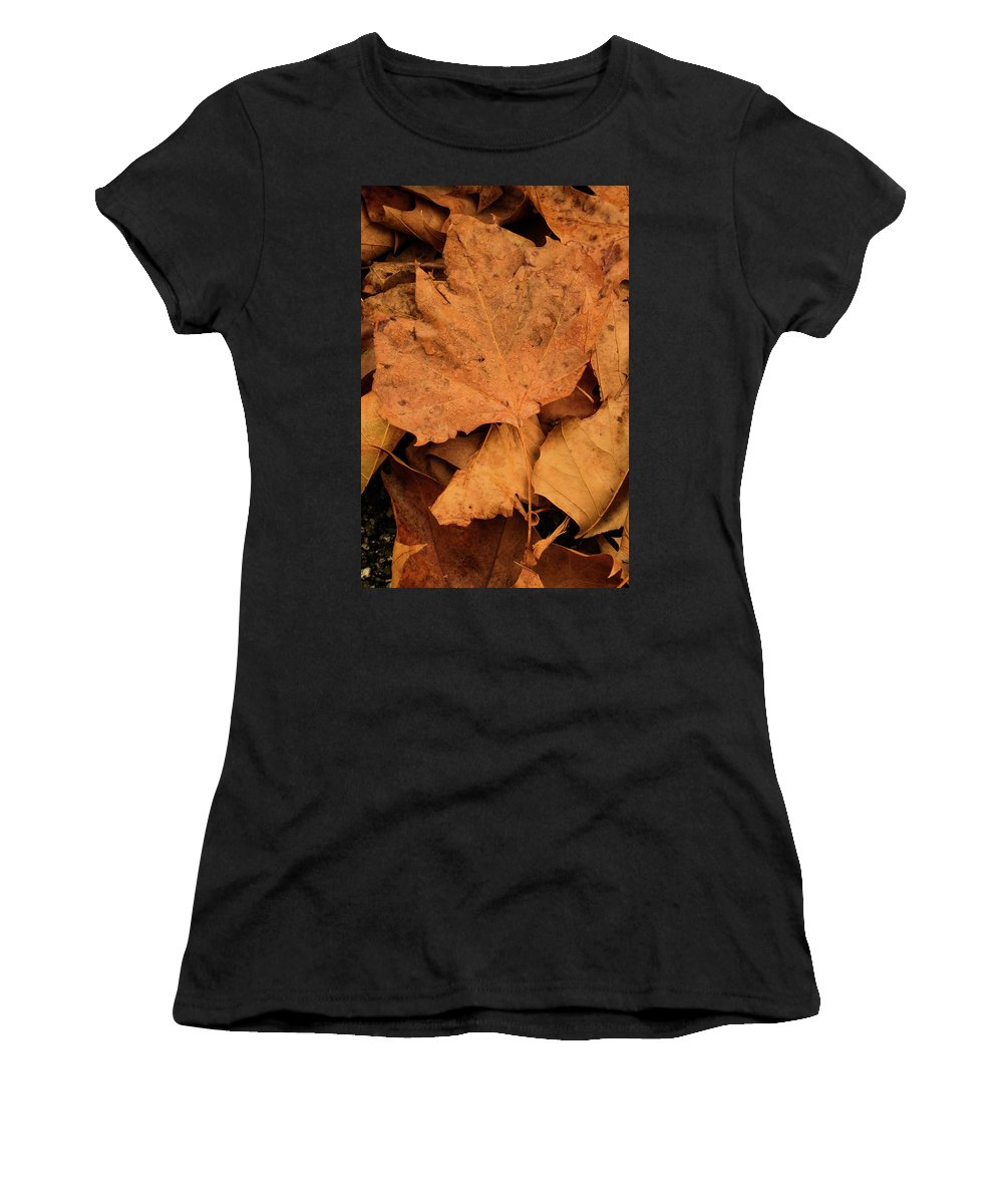 Winter Women's T-Shirt (Athletic Fit) featuring the photograph Colors Of Winter by Antonio Rei
