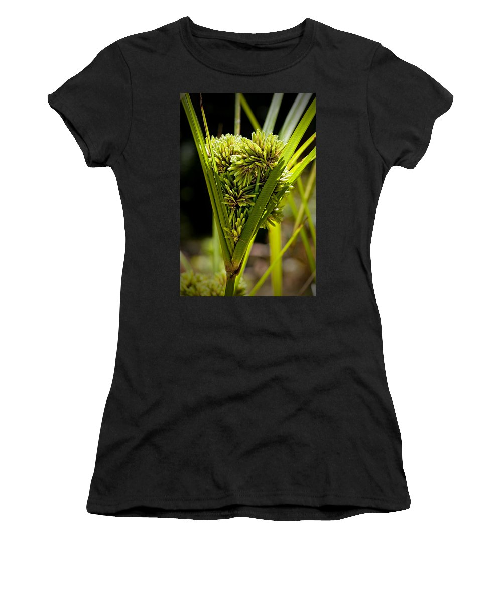 Weeds Women's T-Shirt (Athletic Fit) featuring the photograph Cone Of Green by Kelley King