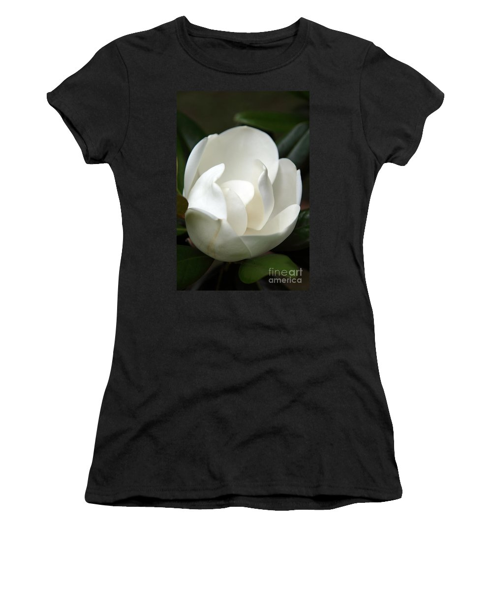 Magnolia Women's T-Shirt (Athletic Fit) featuring the photograph Container by Amanda Barcon