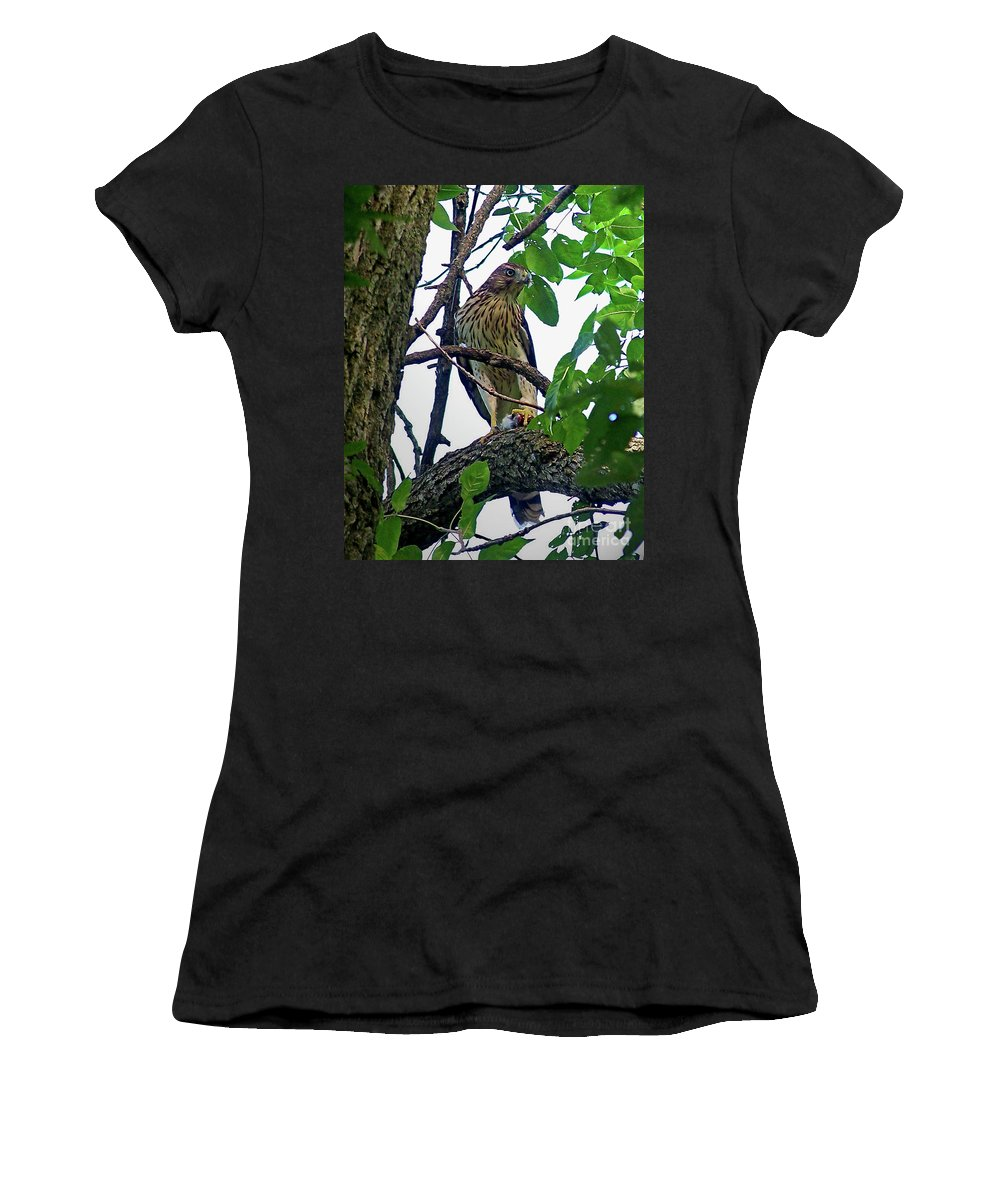 Color Photography Women's T-Shirt (Athletic Fit) featuring the photograph Cooper Hawk by Sue Stefanowicz