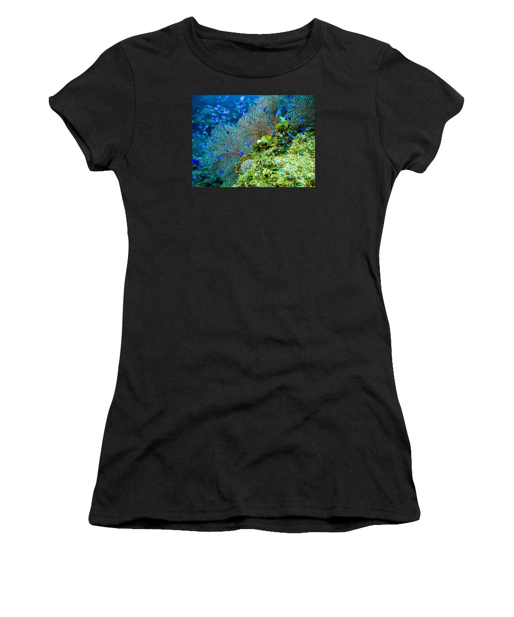 Coral Women's T-Shirt (Athletic Fit) featuring the photograph Coral In Truk by Dan Norton