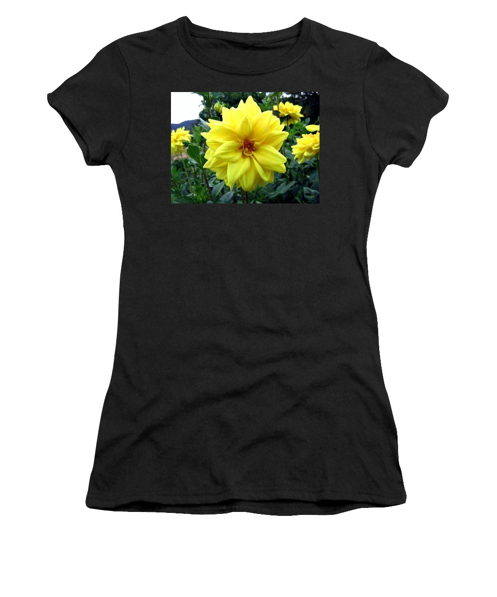 Yellow Dahlias Women's T-Shirt (Athletic Fit) featuring the photograph Country Dahlias by Will Borden