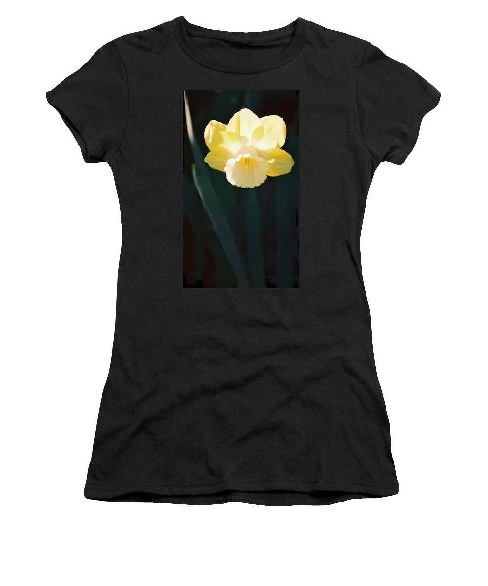 Daffodil Women's T-Shirt (Athletic Fit) featuring the photograph Daffodil by Steve Karol