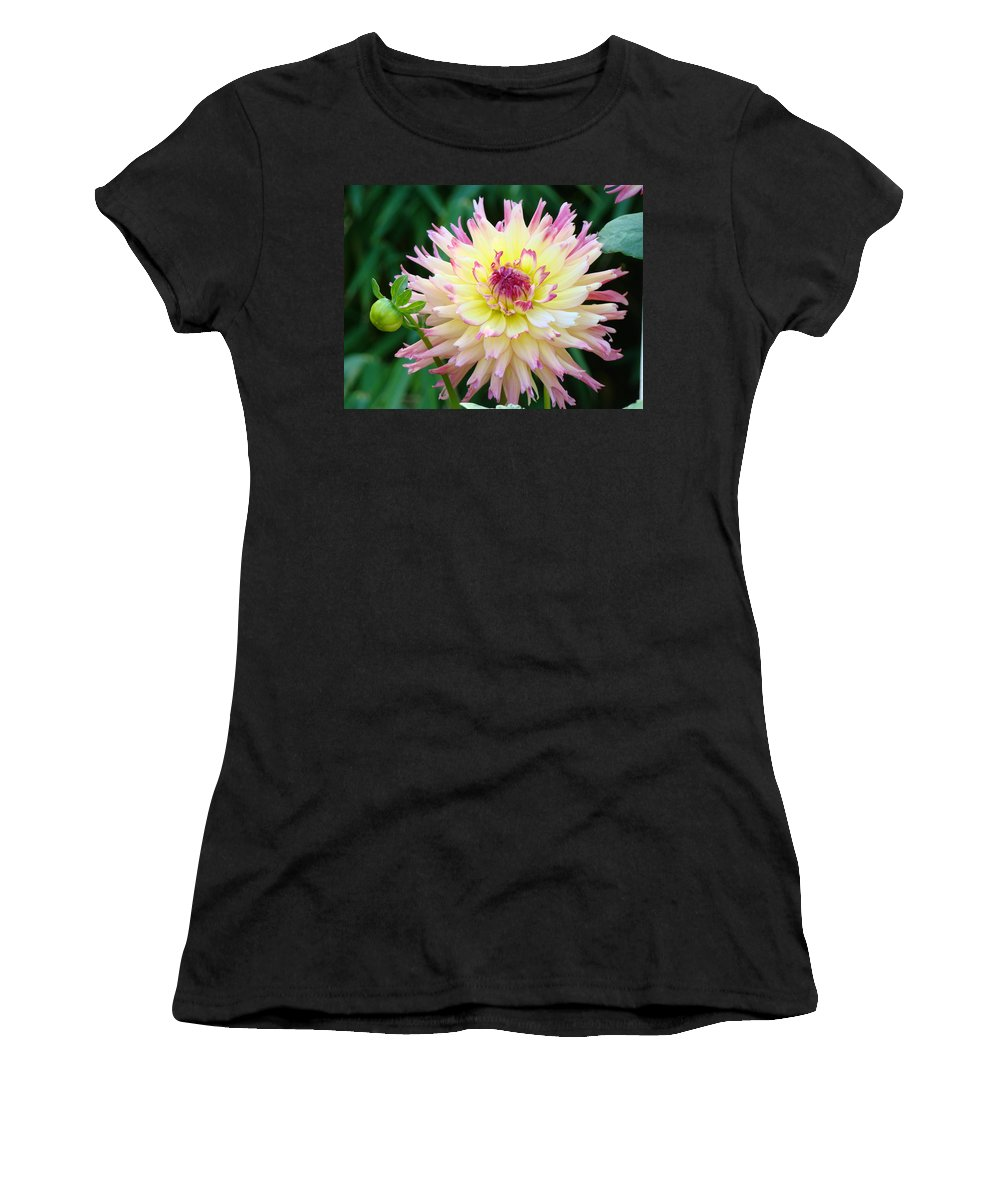 Flowers Women's T-Shirt featuring the photograph Dahlia Floral Pink Yellow Flower Garden Baslee Troutman by Baslee Troutman