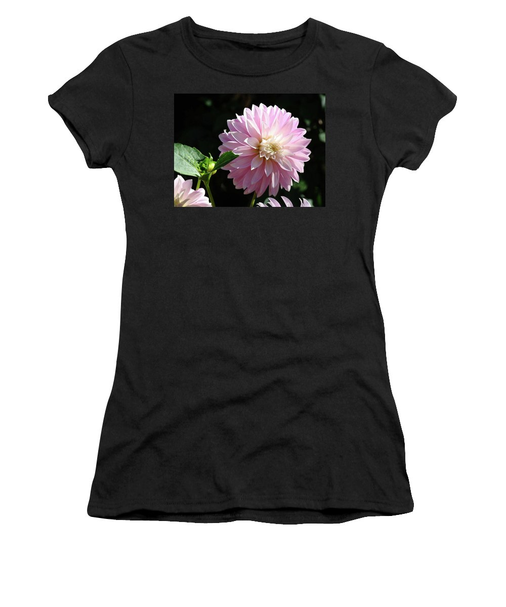 Dahlia Women's T-Shirt (Athletic Fit) featuring the photograph Dahlia Flower Art Pink Dahlias Giclee Art Prints Baslee Troutman by Baslee Troutman