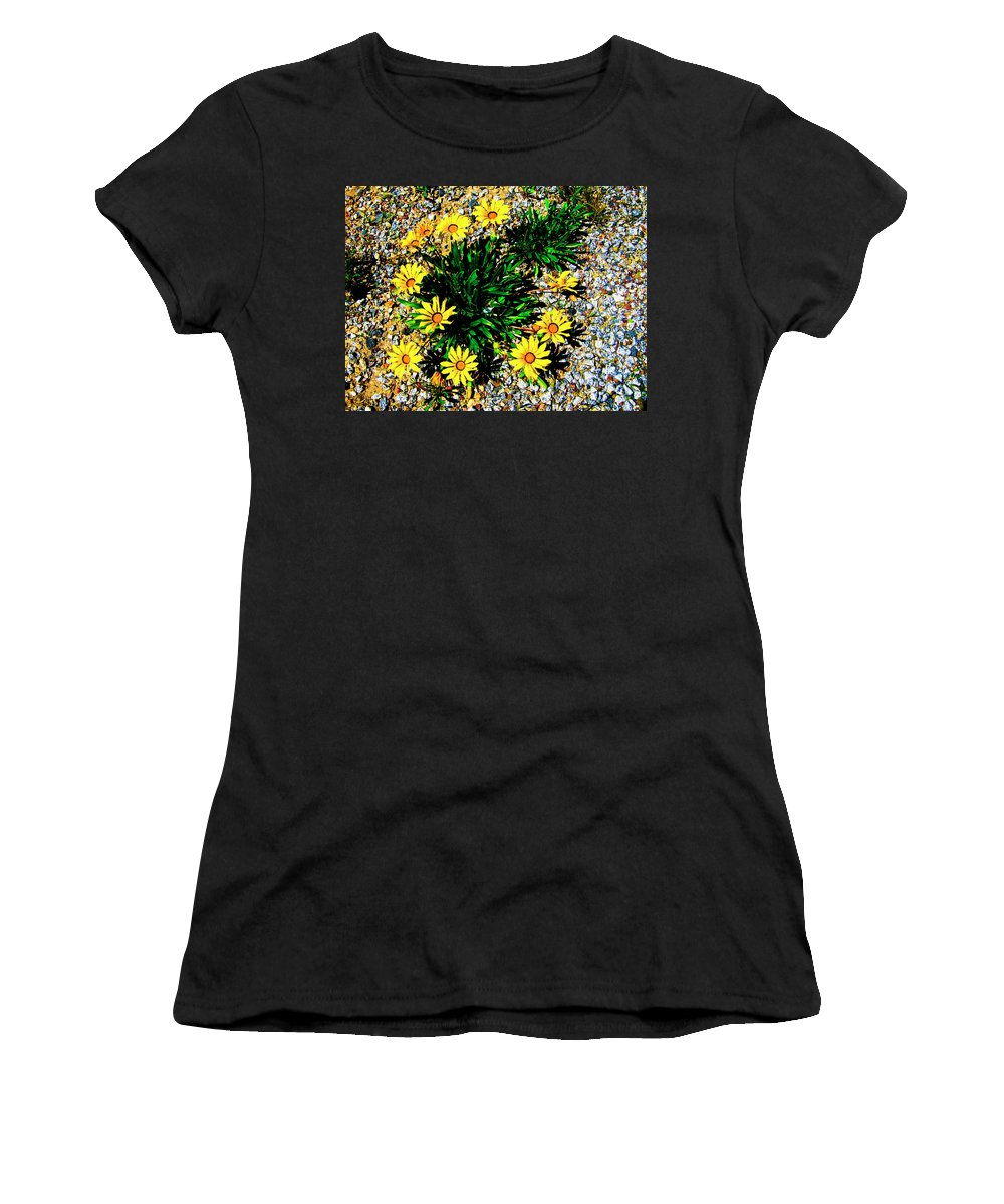 Daisies Women's T-Shirt (Athletic Fit) featuring the photograph Daisy Decor by Douglas Barnard