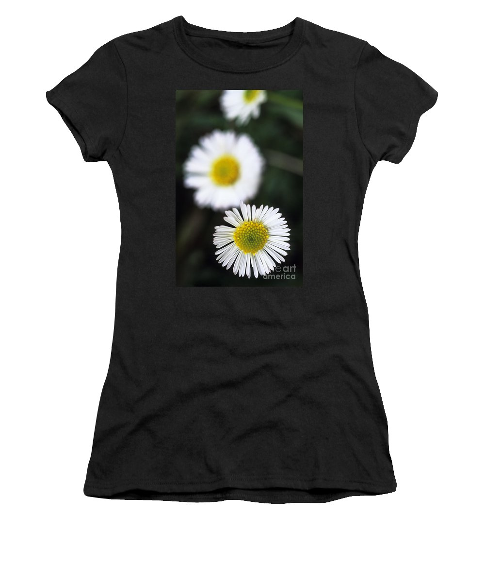 Afternoon Women's T-Shirt featuring the photograph Daisys by Carl Shaneff - Printscapes