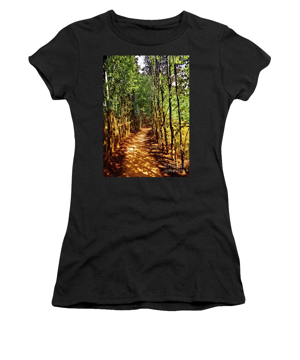 Trees Women's T-Shirt (Athletic Fit) featuring the photograph Dappled Days by Madeline Ellis