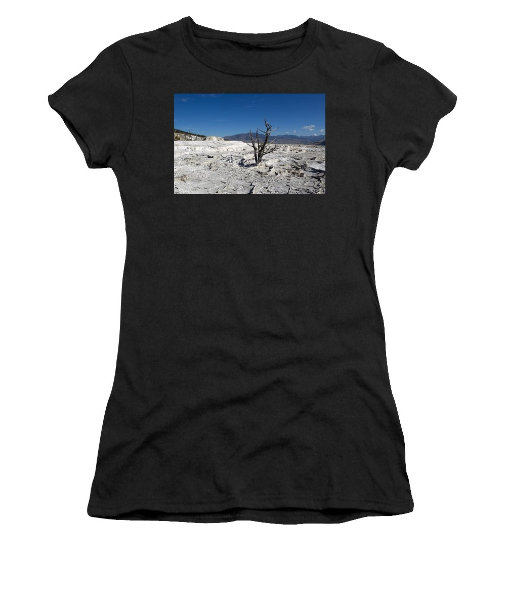 Tree Women's T-Shirt featuring the photograph Dead Tree In Yellowstone Park Hot Springs by Thomas Baker