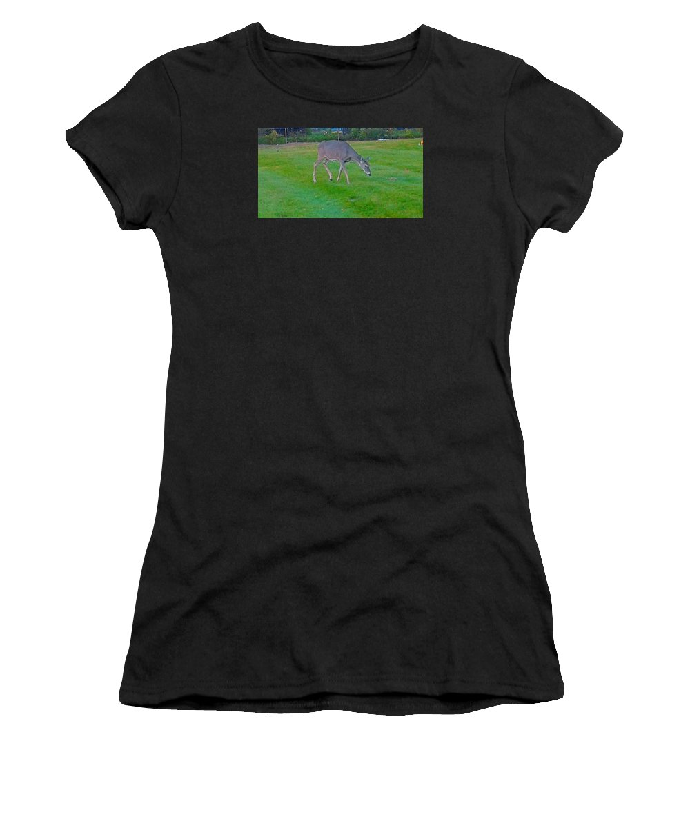 Women's T-Shirt (Athletic Fit) featuring the photograph Deer Grazing In City Field by Shirley Riggs-spencer