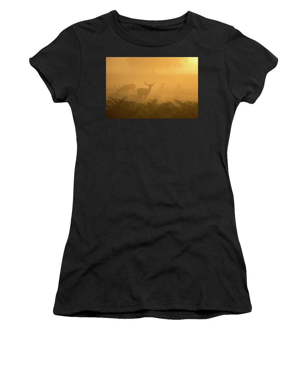 Deer Women's T-Shirt (Athletic Fit) featuring the photograph Deer Silhouettes by Happy Home Artistry