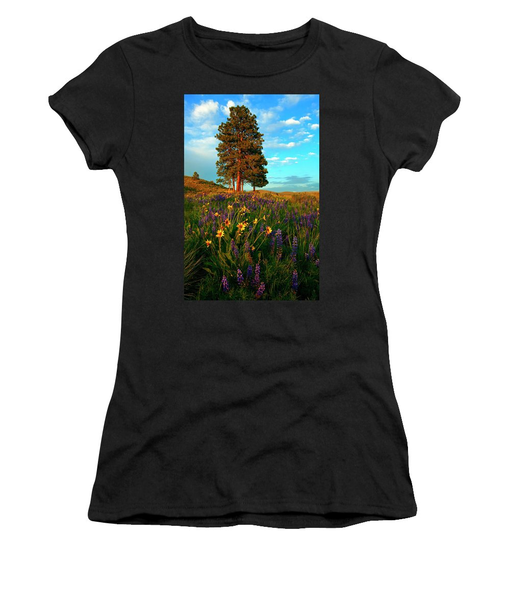 Meadow Women's T-Shirt (Athletic Fit) featuring the photograph Desert Pines Meadow by Mike Dawson