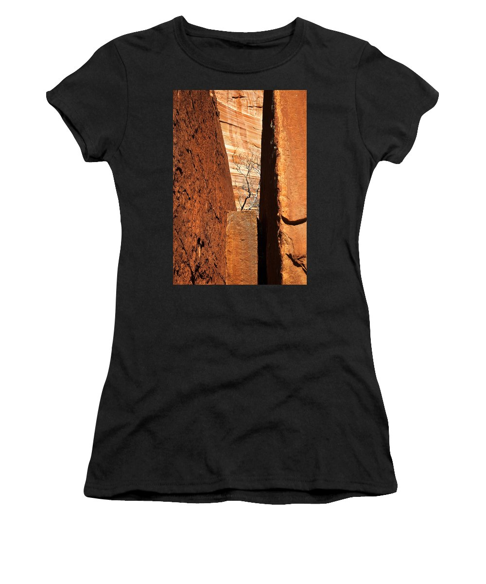 Vise Women's T-Shirt (Athletic Fit) featuring the photograph Desert Vise by Mike Dawson
