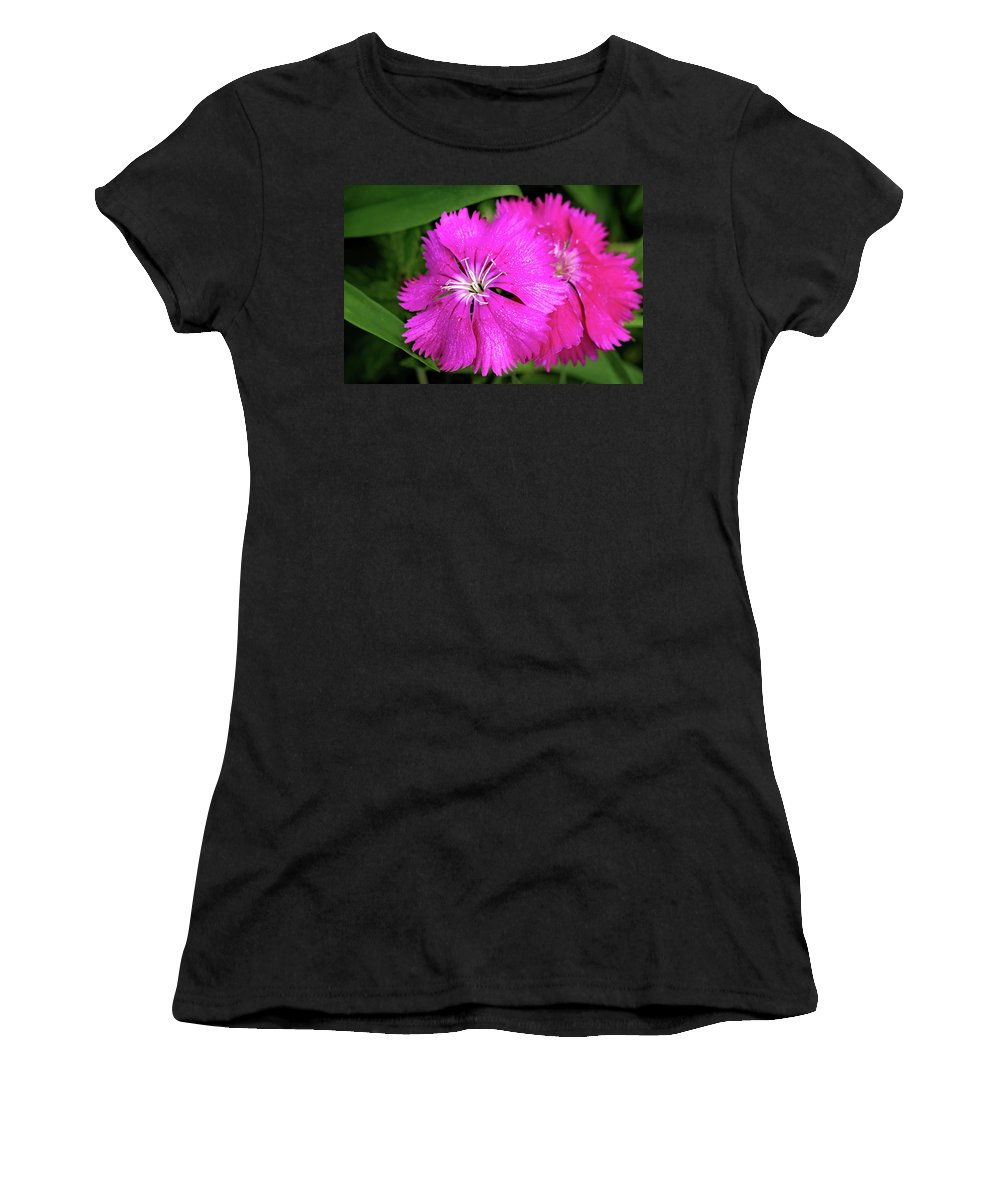 Dianthus First Love Flower Print Women's T-Shirt (Athletic Fit) featuring the photograph Dianthus First Love Flower Print by Gwen Gibson