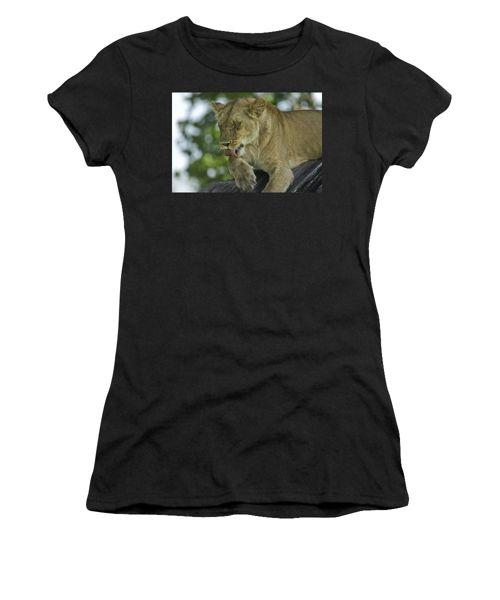 Africa Women's T-Shirt (Athletic Fit) featuring the photograph Dirty Paws by Michele Burgess