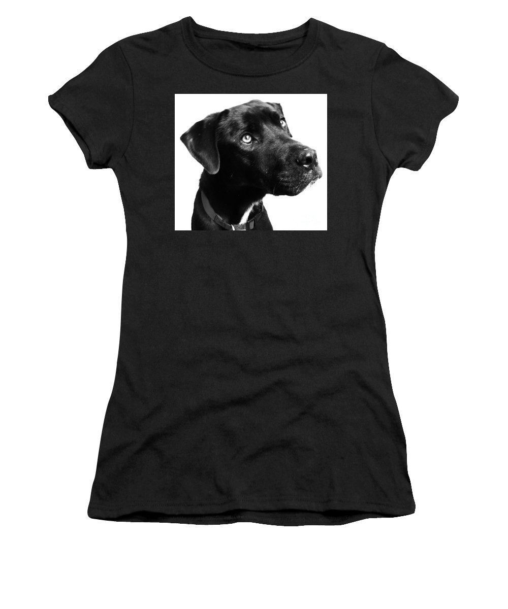 Dogs Women's T-Shirt (Athletic Fit) featuring the photograph Dog by Amanda Barcon