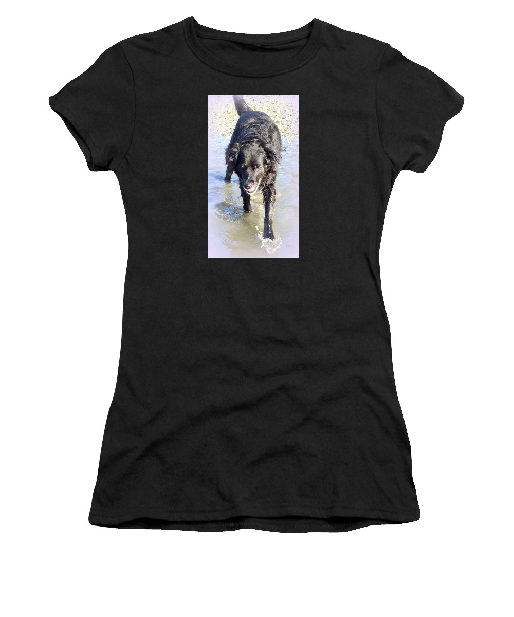 Troll Women's T-Shirt featuring the photograph When The Dog Can Finally Cool Down Her Feet She Obviously Enjoys It by Hilde Widerberg