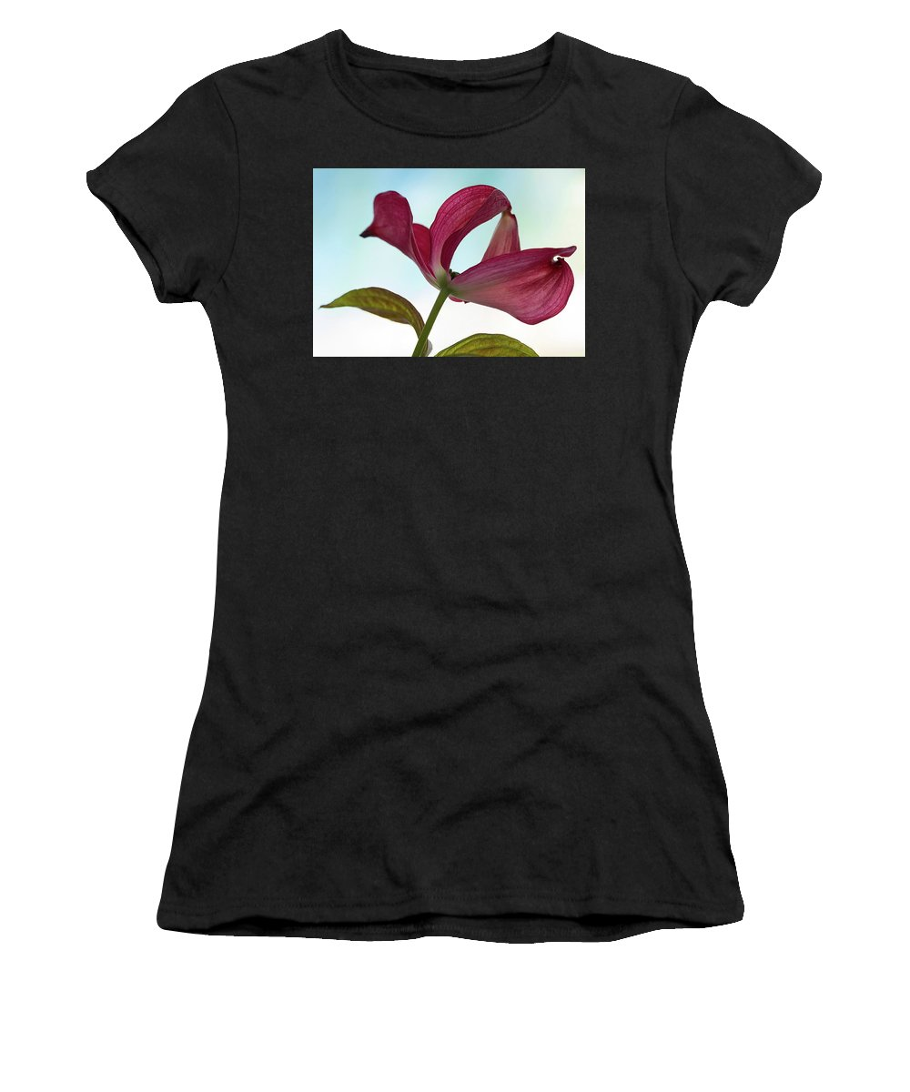 Floral Women's T-Shirt (Athletic Fit) featuring the photograph Dogwood Ballet 3 by Shirley Mitchell