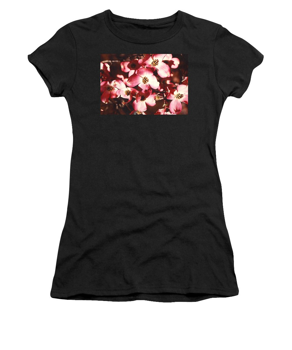 Dogwood Women's T-Shirt (Athletic Fit) featuring the photograph Dogwood Harmony by Nancy Mueller