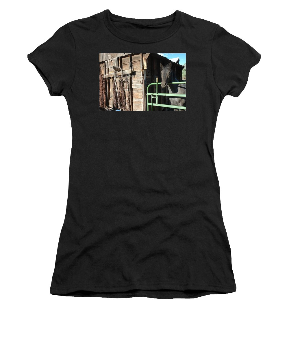 Horse Women's T-Shirt (Athletic Fit) featuring the photograph Down On The Ranch by Jerry McElroy