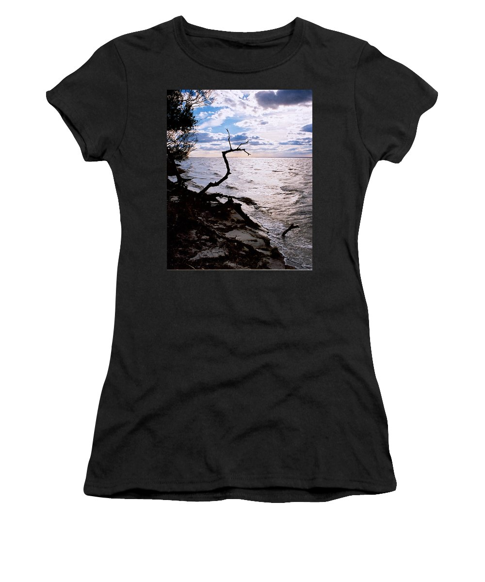 Barnegat Women's T-Shirt (Athletic Fit) featuring the photograph Driftwood Dragon-barnegat Bay by Steve Karol