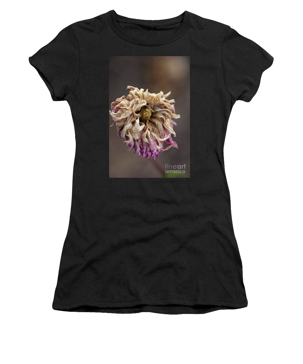Dahlia Flower Women's T-Shirt (Athletic Fit) featuring the photograph Drying And Aged Dahlia by Joy Watson