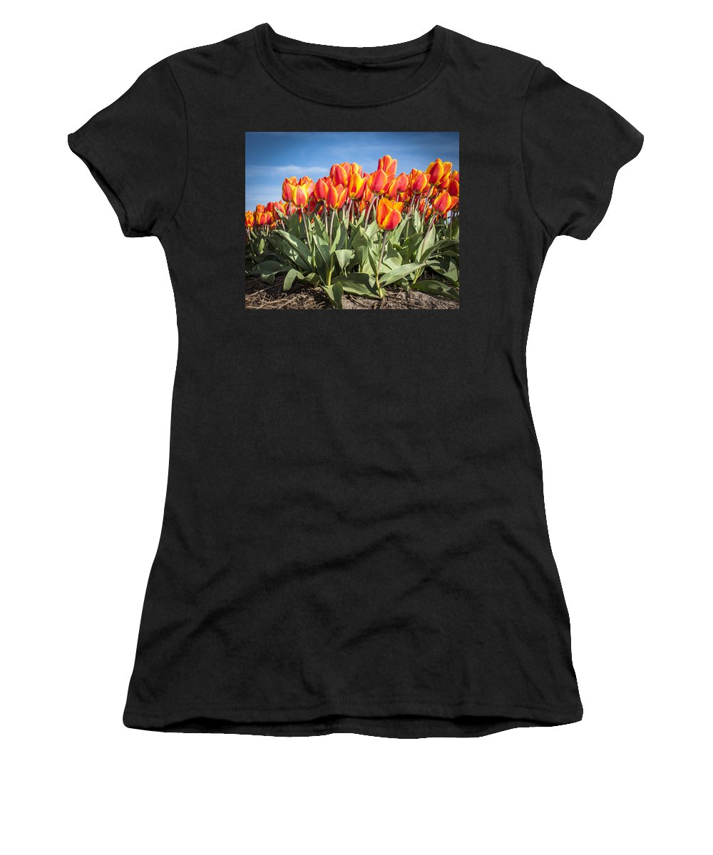 Netherlands Women's T-Shirt featuring the photograph Dutch Tulips Second Shoot Of 2015 Part 3 by Alex Hiemstra