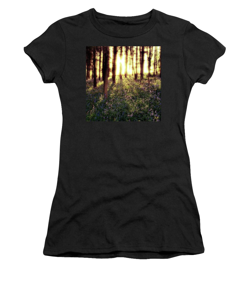 Sunrise Women's T-Shirt featuring the photograph Early Morning Amongst The by John Edwards