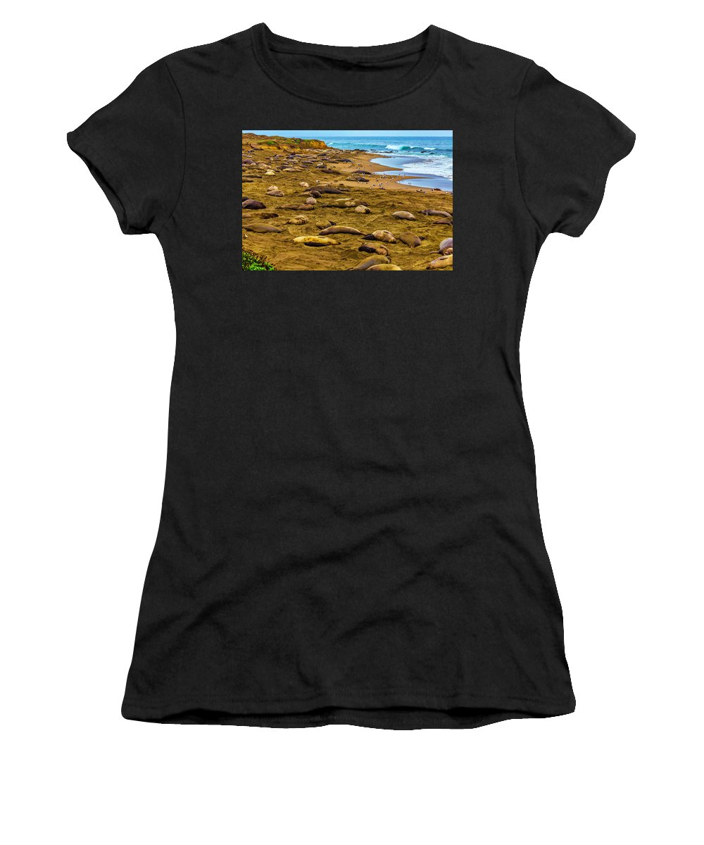 Elephant Women's T-Shirt (Athletic Fit) featuring the photograph Elephant Seals Near Cambria by Garry Gay