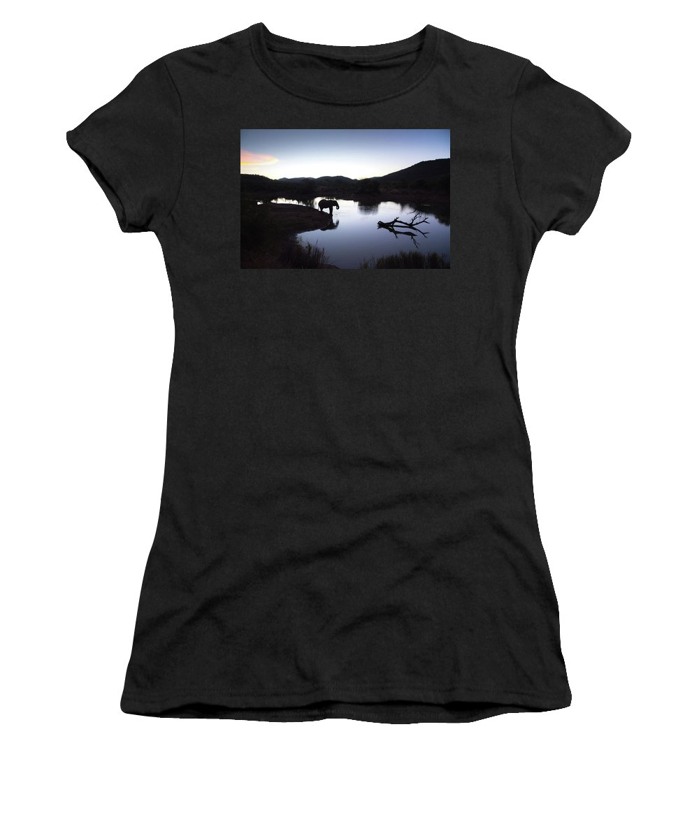 Africa. Women's T-Shirt (Athletic Fit) featuring the photograph Elephant Silhouette At Sunset by Gareth Pickering