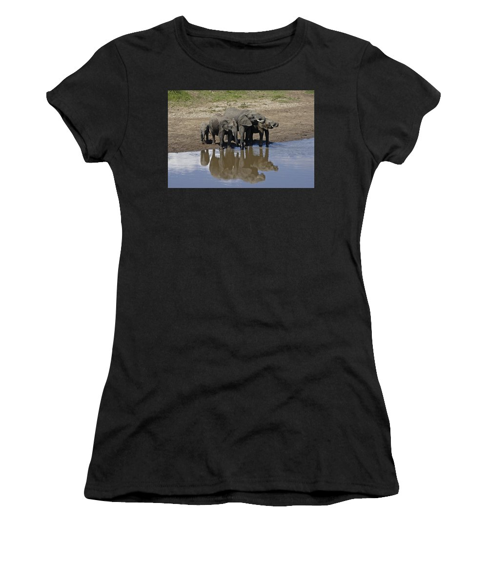 Africa Women's T-Shirt (Athletic Fit) featuring the photograph Elephants In The Mirror by Michele Burgess