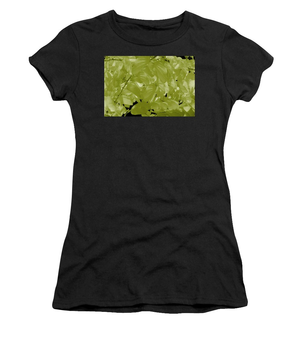 Leaves Women's T-Shirt (Athletic Fit) featuring the photograph Epiphnay 1 by Gary Bartoloni