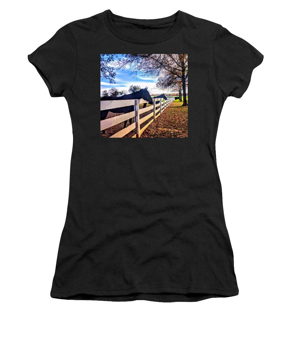Gold Women's T-Shirt (Athletic Fit) featuring the photograph Equine Profiles by Paul Kercher