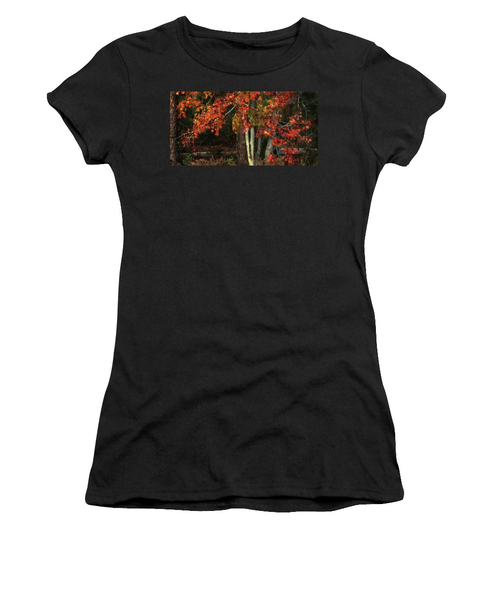 Panoramic Women's T-Shirt (Athletic Fit) featuring the photograph Fall Colors by Artie Rawls