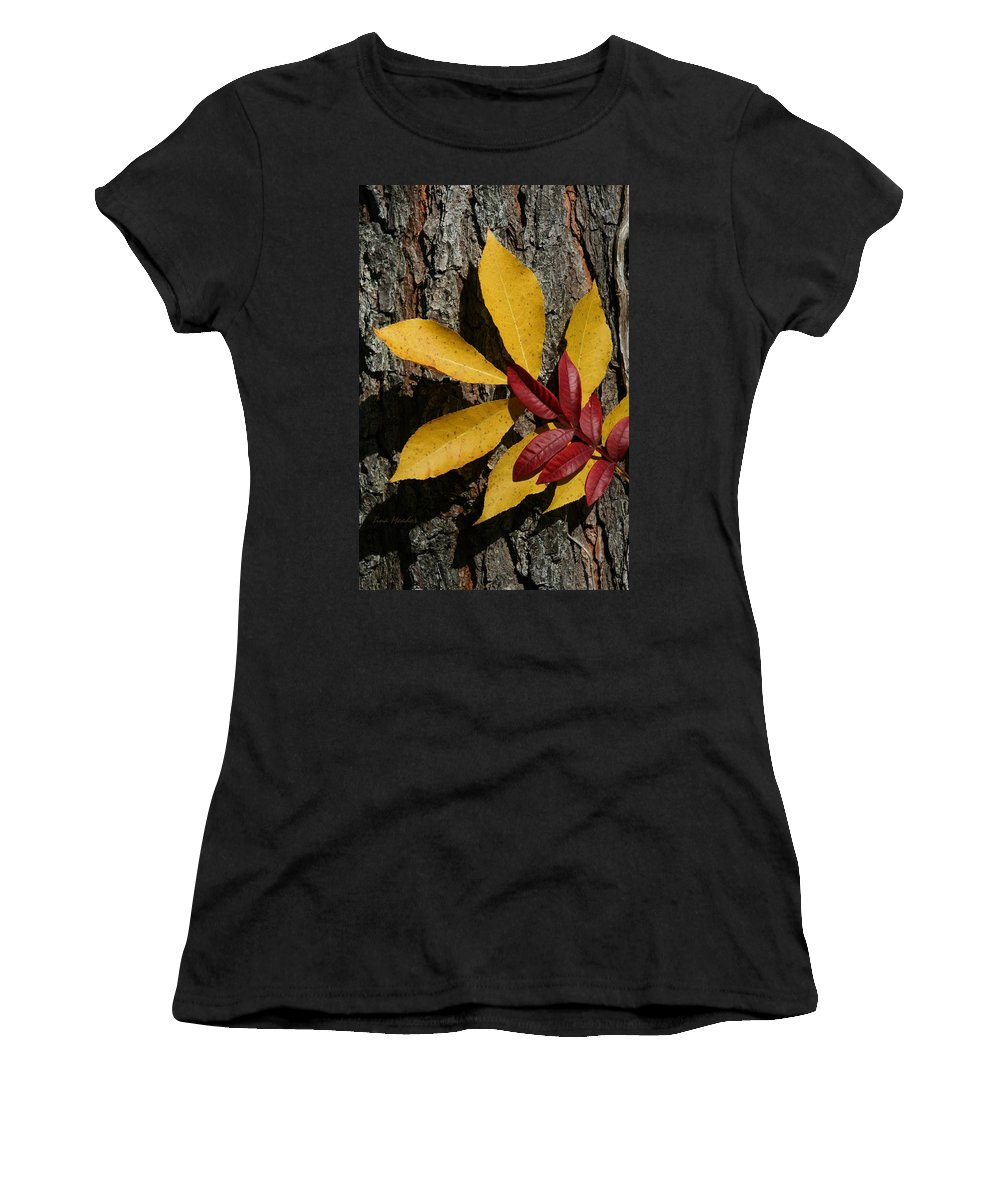 Fall Women's T-Shirt (Athletic Fit) featuring the photograph Fall Leaves by Tina Meador