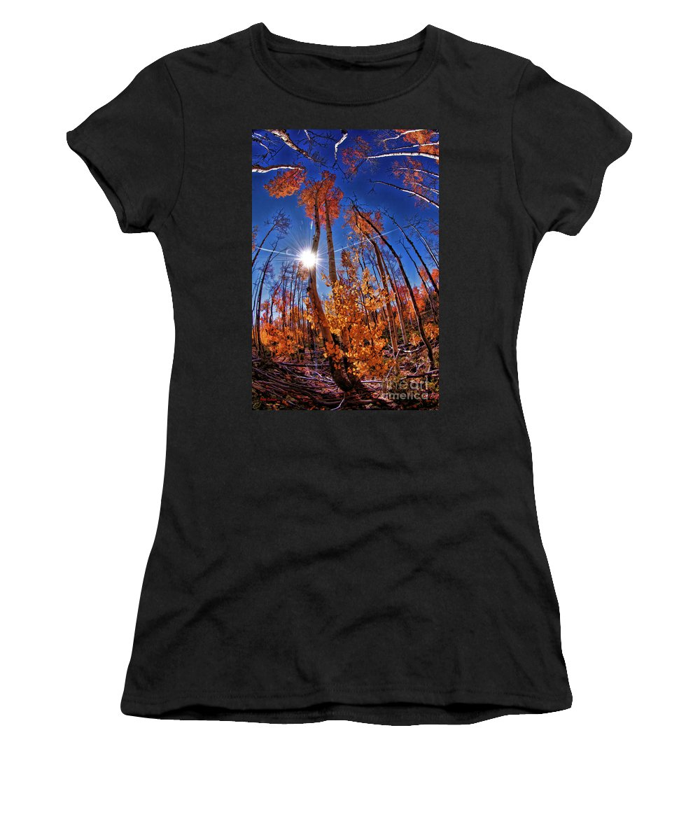 Women's T-Shirt (Athletic Fit) featuring the photograph Fall Sun And Trees by Blake Richards