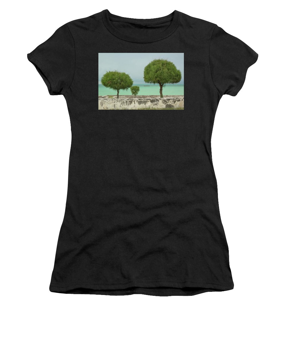 Trees Women's T-Shirt (Athletic Fit) featuring the photograph Family Of Trees. by Aleksandra Moroz