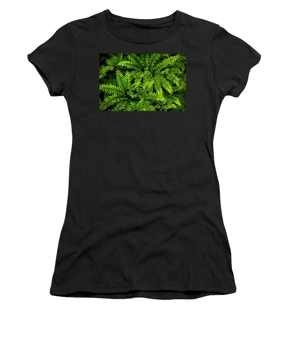 Arboretum Women's T-Shirt (Athletic Fit) featuring the photograph Ferns After The Rain by Shawn Einerson