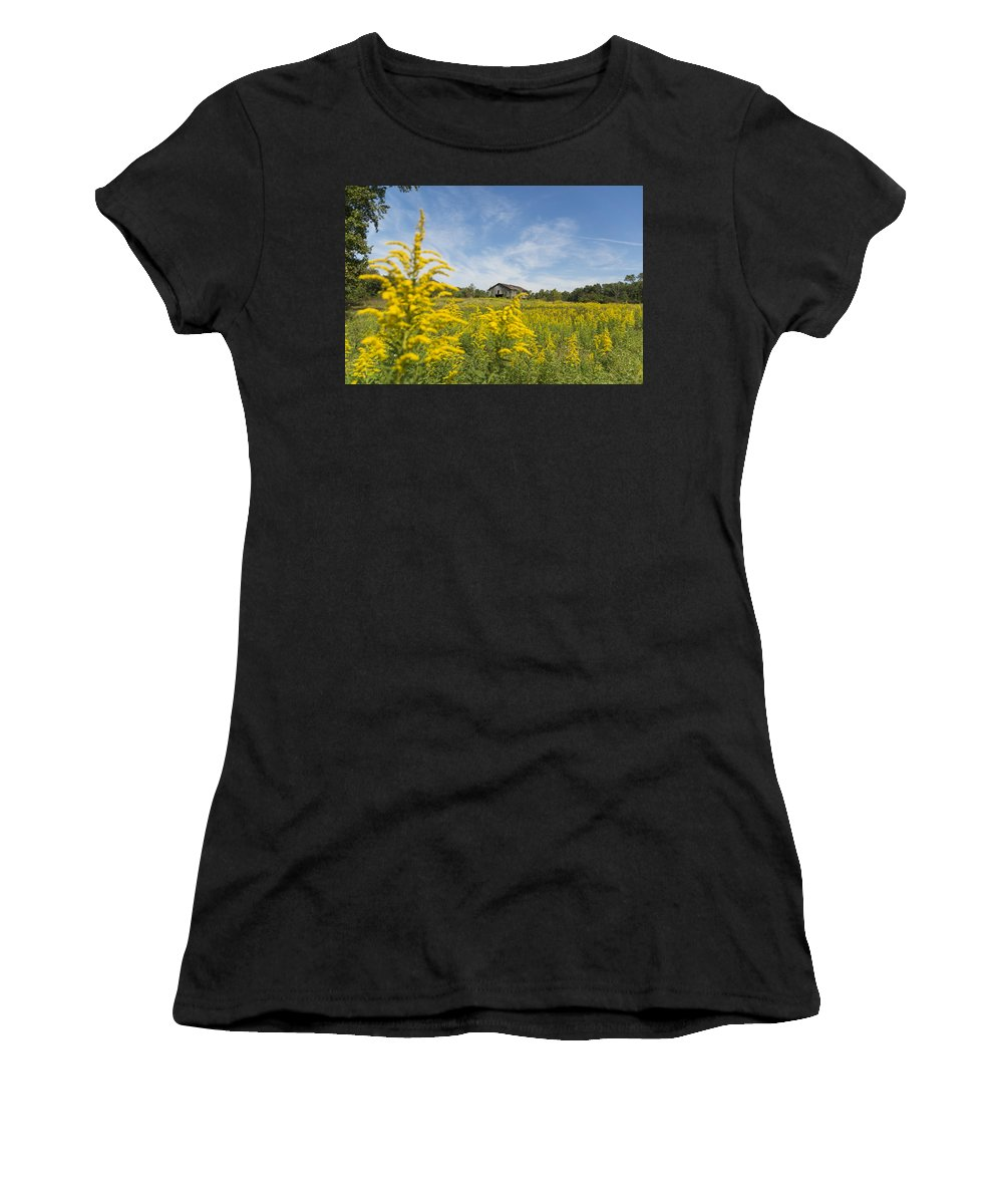 Field Women's T-Shirt (Athletic Fit) featuring the photograph Field Of Gold by Johnnie Nicholson