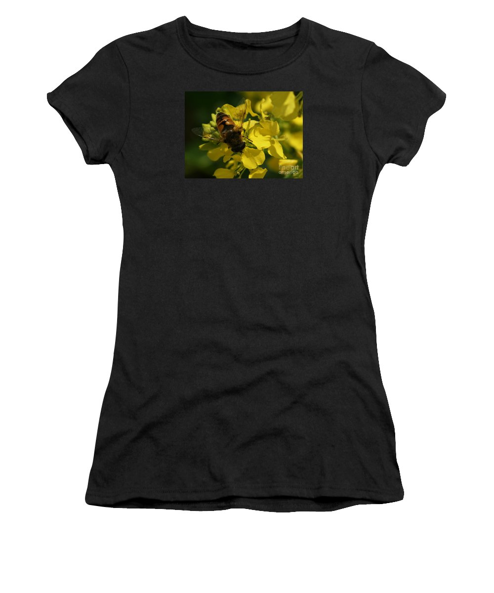 Bee Women's T-Shirt (Athletic Fit) featuring the photograph Finding Each Other by Linda Shafer
