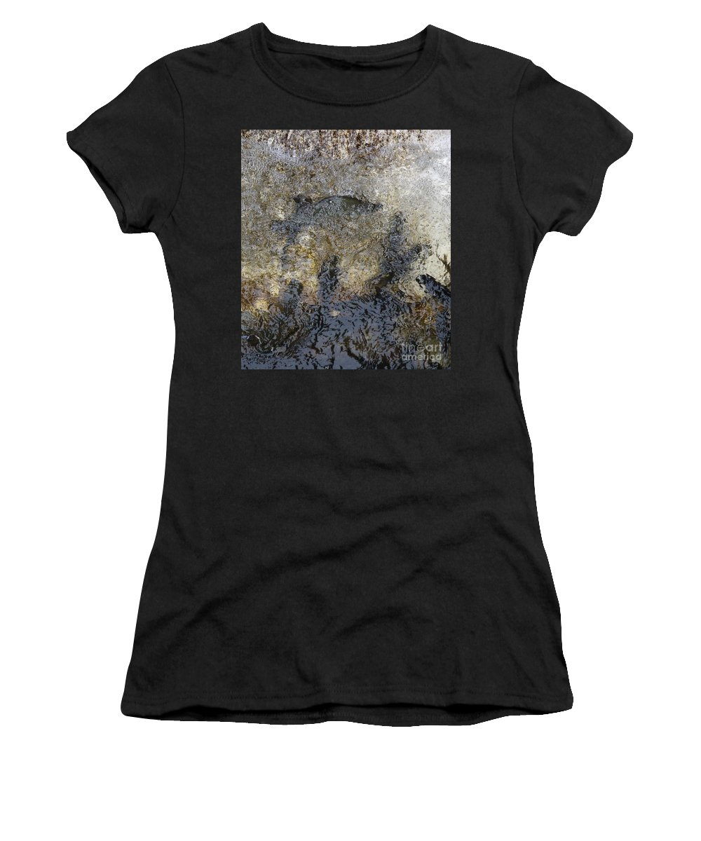 Fish Women's T-Shirt featuring the photograph Fish Going Up The Fish Ladder Sebasticook Lake Newport Maine by Colleen Snow