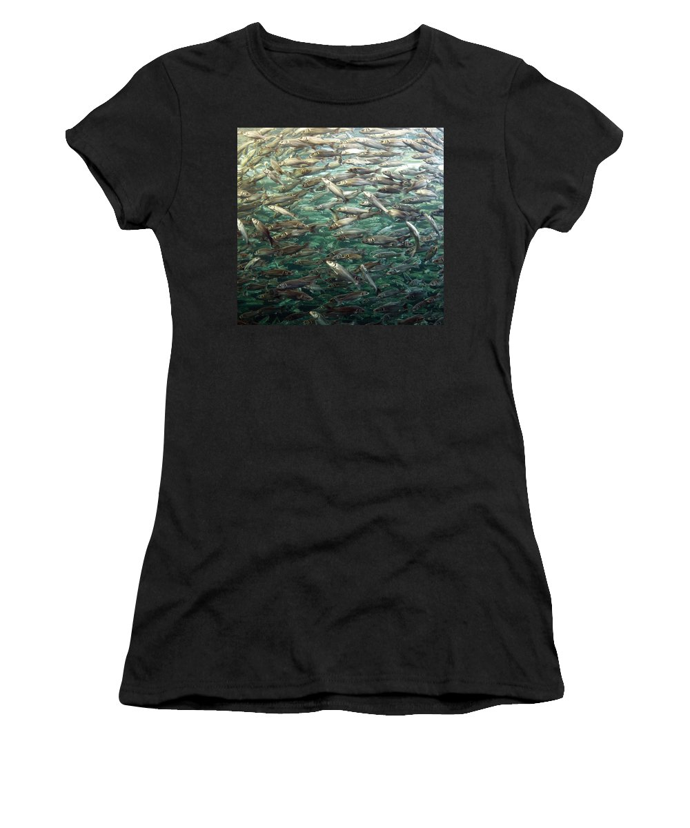 Spain Women's T-Shirt (Athletic Fit) featuring the photograph Fishes by Jouko Lehto