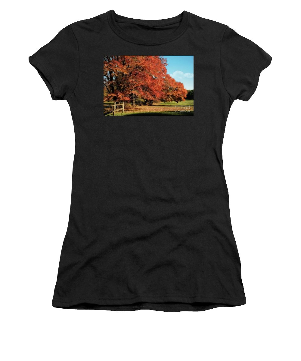 Autumn Women's T-Shirt (Athletic Fit) featuring the photograph Flame Trees by Lois Bryan
