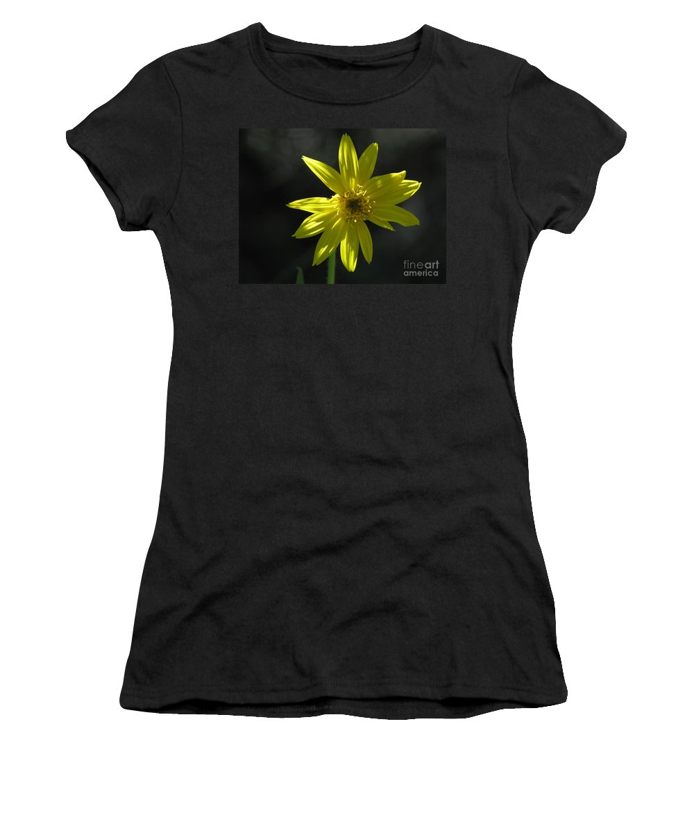 Light Women's T-Shirt (Athletic Fit) featuring the photograph Floral by Amanda Barcon