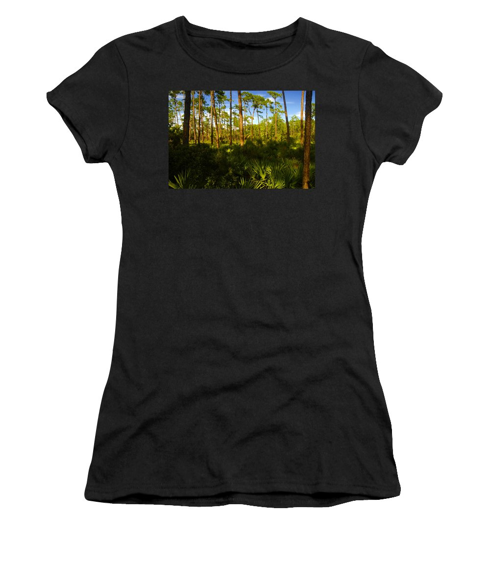 Pine Trees Women's T-Shirt (Athletic Fit) featuring the painting Florida Pine Forest by David Lee Thompson