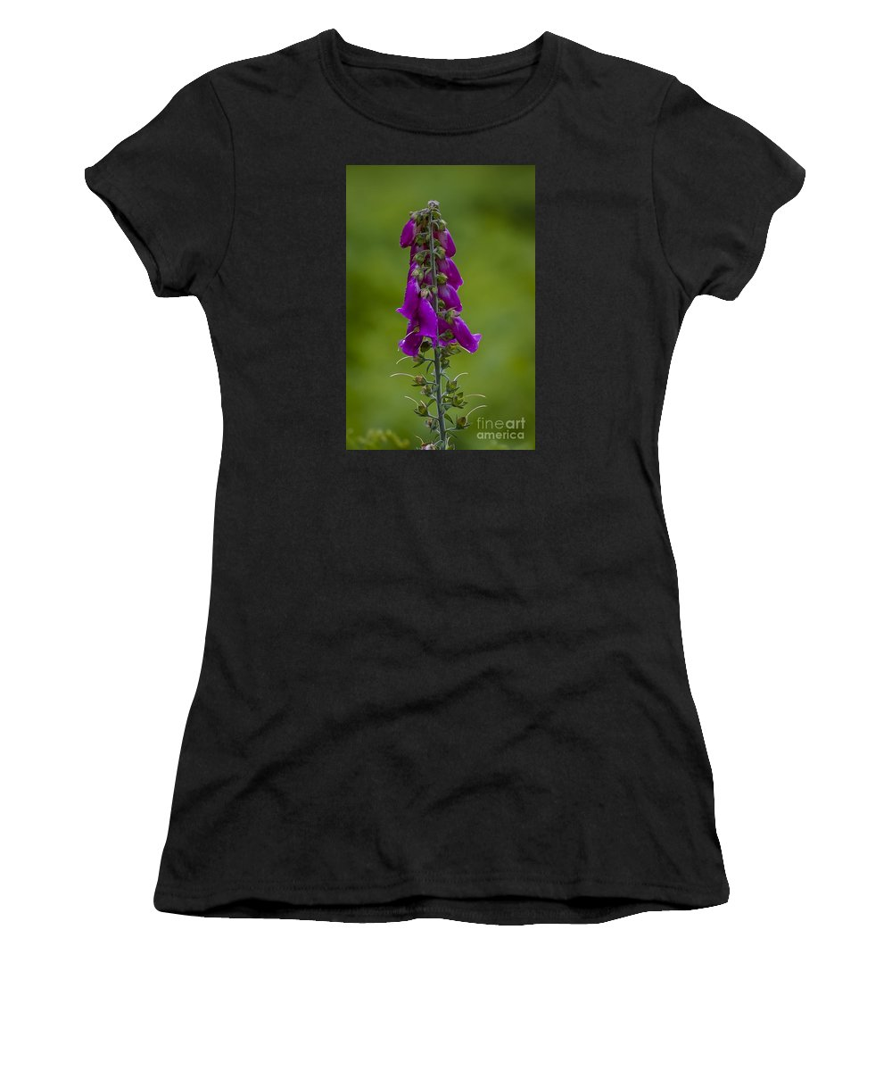 Flowers Women's T-Shirt featuring the photograph Flower 11 by Nancy L Marshall