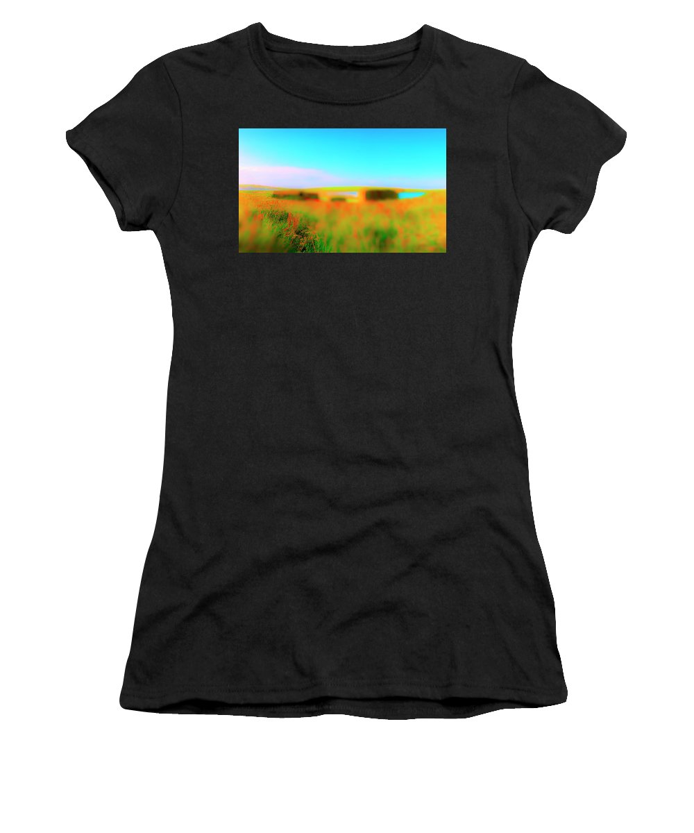 Railroad Women's T-Shirt featuring the photograph Flower Boxes by Jan W Faul