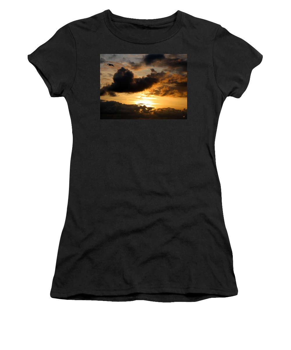 Seagull Women's T-Shirt featuring the photograph Flying Solo by Will Borden