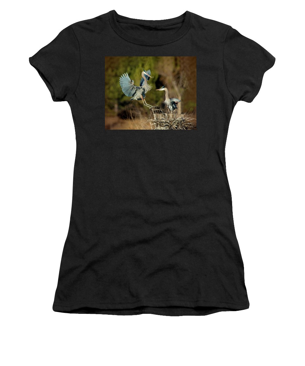 Great Blue Herons Women's T-Shirt (Athletic Fit) featuring the photograph For The Nest, Honey by Judi Dressler